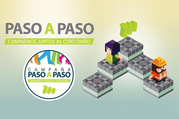 App Campaña Paso A Paso